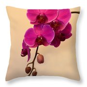 Magenta Phalaenopsis Orchid Throw Pillow