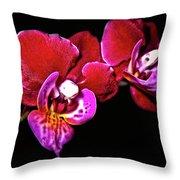Magenta Phaleonopsis Orchid Throw Pillow