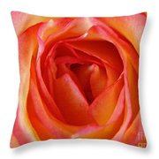 Magestic Pink Rose Throw Pillow