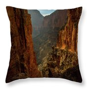 Magestic View Throw Pillow