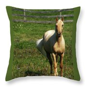 Maggie - Michigans Morning Breeze Throw Pillow
