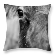 Maggie The Cow Abstract Throw Pillow