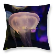 Magic And Dreams Throw Pillow