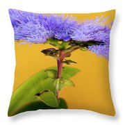 Magic Garden 15 Throw Pillow