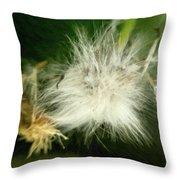 Magic Garden 17 Throw Pillow