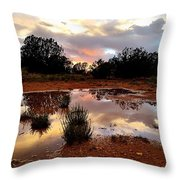Magic In A Rain Puddle Throw Pillow