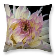 Magic Moment Throw Pillow by Patricia Strand