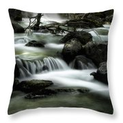 Magic Patagonia Creek Throw Pillow