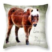 Magic Pony  Throw Pillow