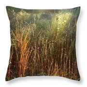Magical Light On The Marsh Throw Pillow