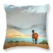 Magical Tekapo Throw Pillow by Chris Cousins