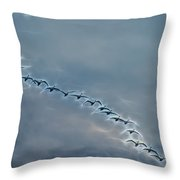 Magical Tundra Swan Fly-over Throw Pillow by Beth Sawickie