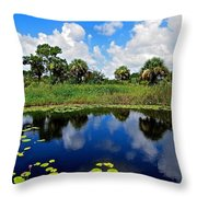 Magical Water Lily Pond 2 Throw Pillow