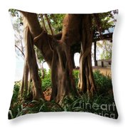 Magnetic Island Fig 4 Throw Pillow