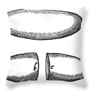 Magnets From De Magnete By W. Gilbert Throw Pillow