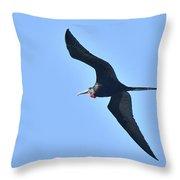 Magnificent Frigatebird Throw Pillow