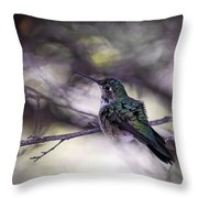 Magnificent Hummingbird Throw Pillow