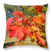 Magnificent Maple Leaves Throw Pillow