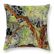 Magnificent Tree Throw Pillow