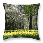 Magnolia And Daffodils Throw Pillow