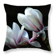 Magnolia And House Guest Throw Pillow