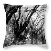 Magnolia Ave Throw Pillow