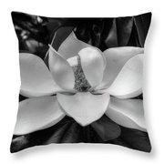 Magnolia Bloom B/w Throw Pillow