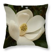 Southern Magnolia Bloom Throw Pillow
