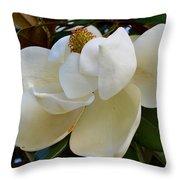 Magnolia Bloom Throw Pillow
