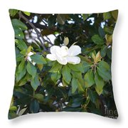 Magnolia Blooming 3 Throw Pillow