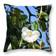 Magnolia Blooming 4 Throw Pillow