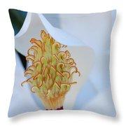 Magnolia Blossom 1 Throw Pillow