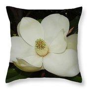 Magnolia Blossom 5 Throw Pillow