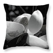 Magnolia Blossom B W Throw Pillow