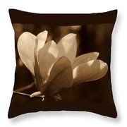 Magnolia Blossom Bw Throw Pillow
