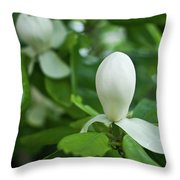 Magnolia Bud Throw Pillow
