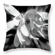 Magnolia Flower In Black And White Throw Pillow