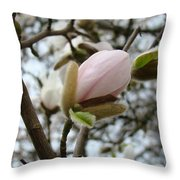 Magnolia Flower Pink White 19 Magnolia Tree Spring Art Throw Pillow