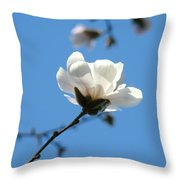 Magnolia Flower Tree Art Prints Blue Sky Floral Baslee Troutman Throw Pillow