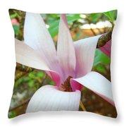 Magnolia Flowering Tree Art Prints White Pink Magnolia Flower Baslee Troutman Throw Pillow
