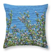 Magnolia Flowering Tree Blue Water Throw Pillow