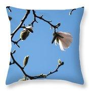 Magnolia Flowers Budding Art Prints Spring Floral Baslee Troutman Throw Pillow