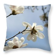 Magnolia Flowers White Magnolia Tree Spring Flowers Artwork Blue Sky Throw Pillow
