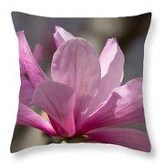 Magnolia Galaxy 7044 Throw Pillow