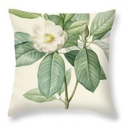 Magnolia Glauca Throw Pillow