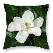 Magnolia Glorious Throw Pillow