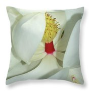 Magnolia Grace And Beauty Throw Pillow