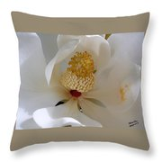 Magnolia Happiness Throw Pillow