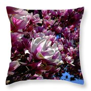 Magnolia In Spring Throw Pillow