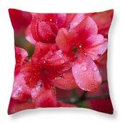 Magnolia Plantation Azaleas Throw Pillow